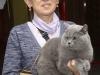британский кот Зевс9