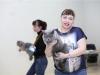 Набукко-лучший в окрасе кот на Британнике 2014-04-12