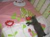 британский кот Нил11
