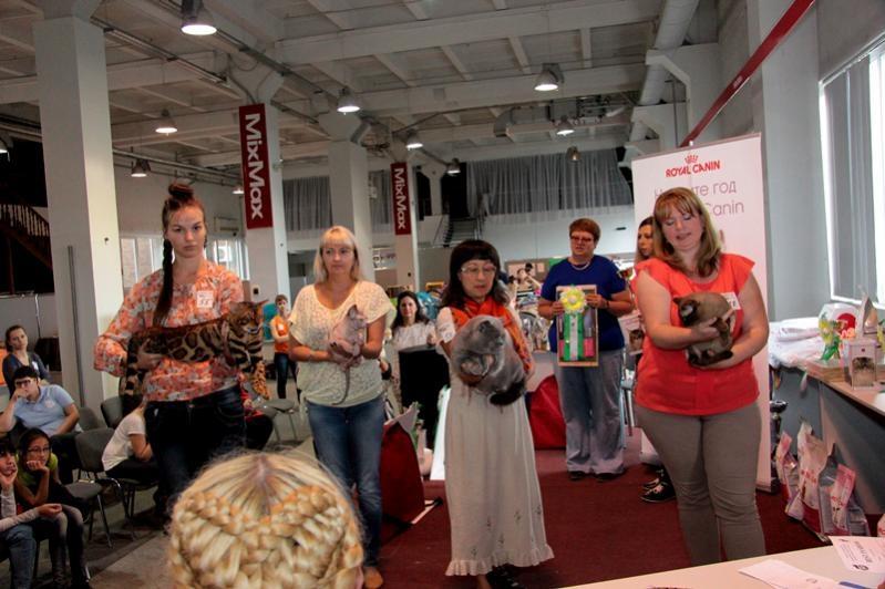 Тарквиний BOB 2 выставка WCF 12.09.15