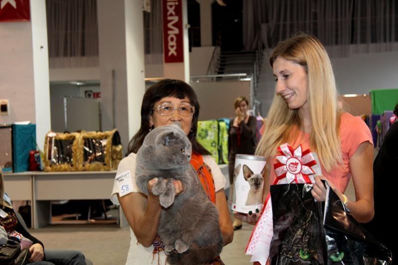 Тарквиний BOB 2 выставка WCF 12.09.15_4