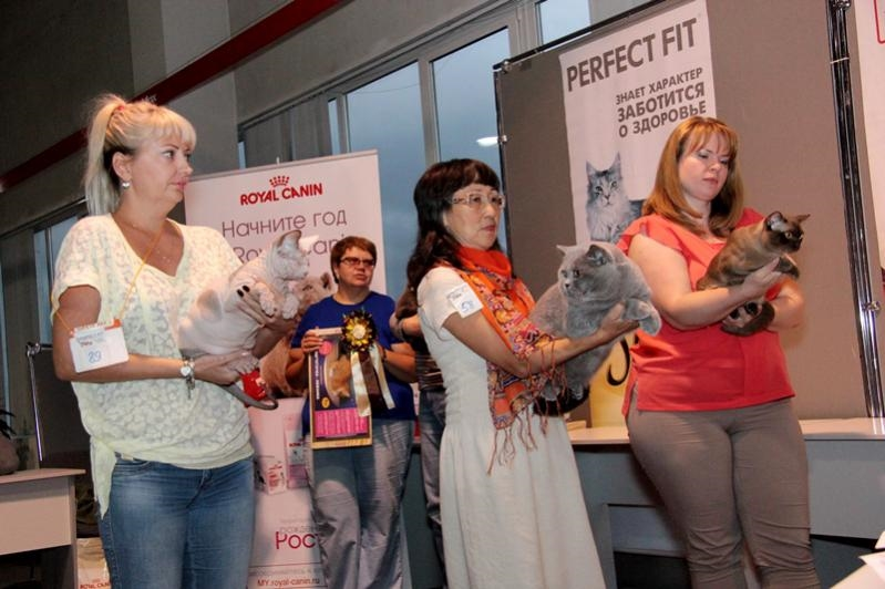 Тарквиний BOB 2 выставка WCF 12.09.15_5