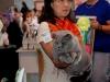 Тарквиний BOB 2 выставка WCF 12.09.15_1