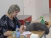 2 Британский кот на выставке20150404