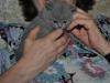 tarkvinii-anna_5557 Британский котик с Анной Пит