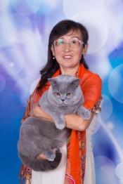 cat-0800_