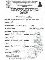 2011.01.23 дипЛ Рождест встречиКрасноярск