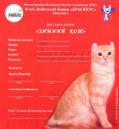 2012.01.06 Зимний кот Ачинск