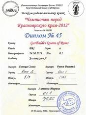 2012.03.03 диплЧем-тКрасноярск